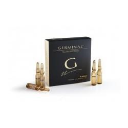AMP GERMINAL 5 UDS